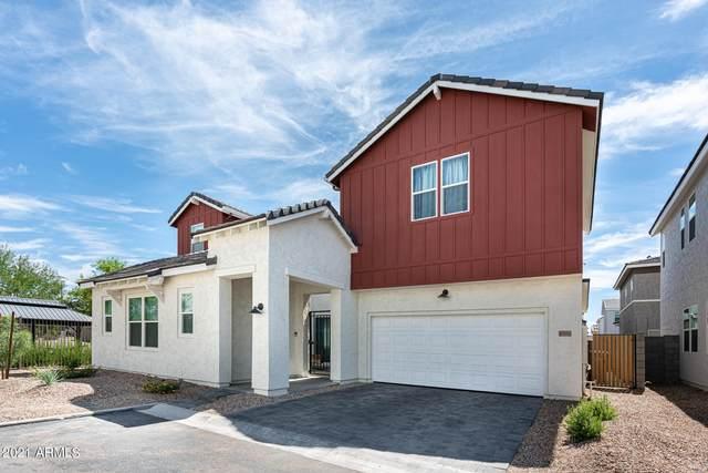 15782 W Polk Street, Goodyear, AZ 85338 (MLS #6250134) :: Conway Real Estate