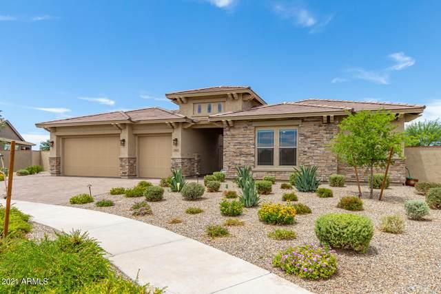 4302 S Binary Circle, Mesa, AZ 85212 (MLS #6250155) :: Executive Realty Advisors