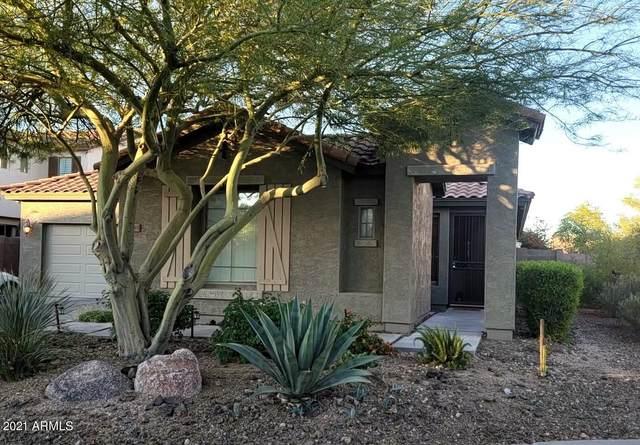 29393 N 125TH Lane, Peoria, AZ 85383 (MLS #6250156) :: The Riddle Group