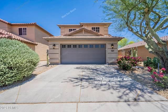 31285 N Mesquite Way, San Tan Valley, AZ 85143 (MLS #6250214) :: Yost Realty Group at RE/MAX Casa Grande