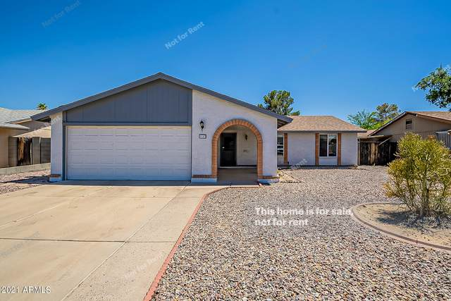 6141 W Karen Lee Lane, Glendale, AZ 85306 (MLS #6250224) :: The Riddle Group