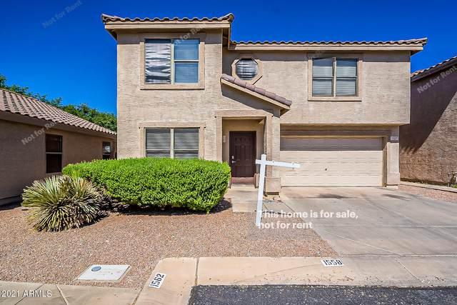 1558 S Danielson Way, Chandler, AZ 85286 (MLS #6250227) :: Lucido Agency