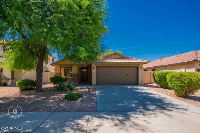 14103 W Larkspur Drive, Surprise, AZ 85379 (MLS #6250232) :: Executive Realty Advisors