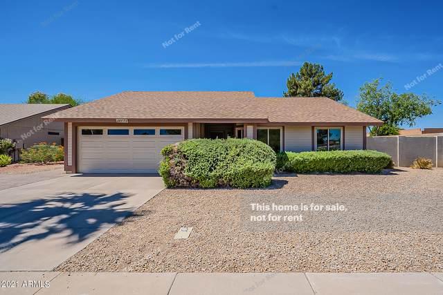 4937 W Kitty Hawk, Chandler, AZ 85226 (MLS #6250252) :: Lucido Agency