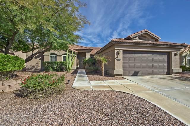 3237 N Couples Drive, Goodyear, AZ 85395 (MLS #6250266) :: Yost Realty Group at RE/MAX Casa Grande