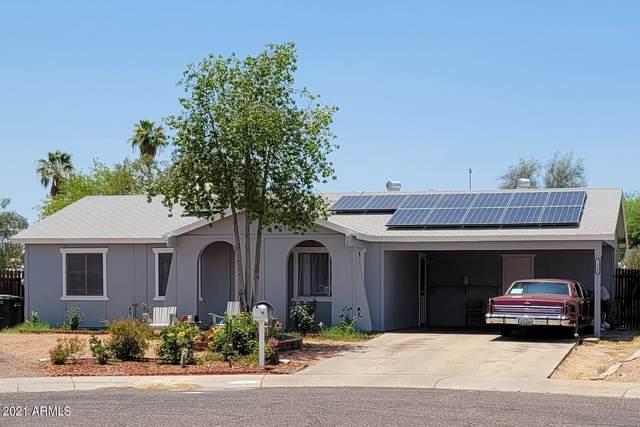 14240 N 35TH Street, Phoenix, AZ 85032 (MLS #6250269) :: Conway Real Estate