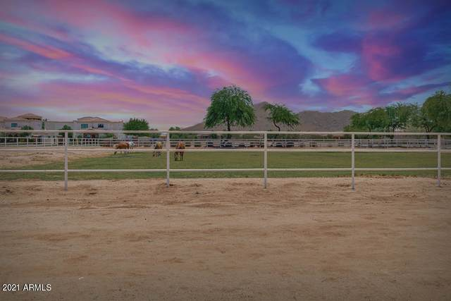 21365 E Orchard Lane, Queen Creek, AZ 85142 (MLS #6250279) :: Executive Realty Advisors