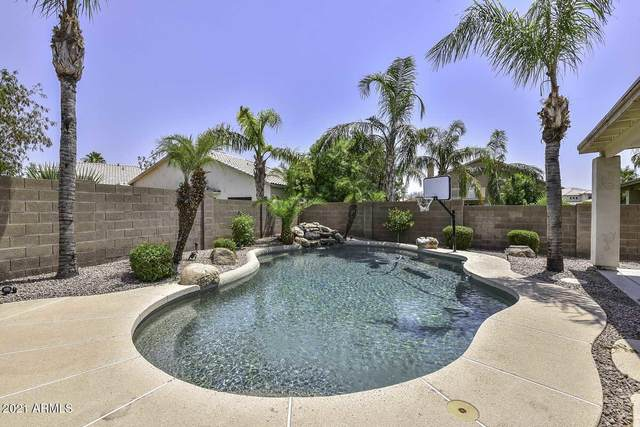 22517 N 68th Avenue, Glendale, AZ 85310 (MLS #6250293) :: Openshaw Real Estate Group in partnership with The Jesse Herfel Real Estate Group