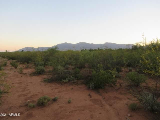 17 E Conestoga Trail, Sierra Vista, AZ 85635 (MLS #6250309) :: Conway Real Estate