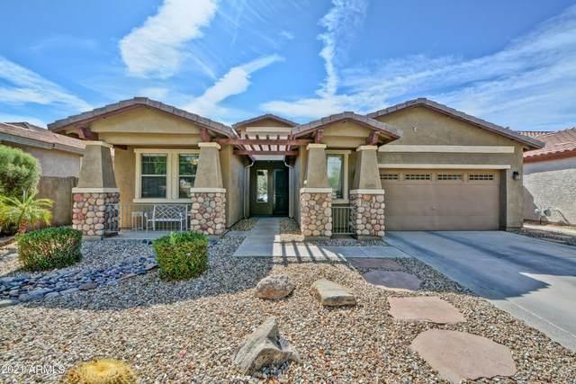 11091 N 161ST Avenue, Surprise, AZ 85379 (MLS #6250310) :: Conway Real Estate