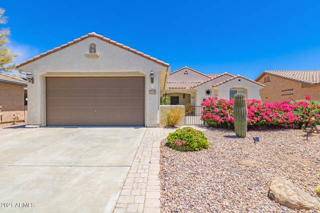 6764 W Willow Way, Florence, AZ 85132 (MLS #6250376) :: The Carin Nguyen Team