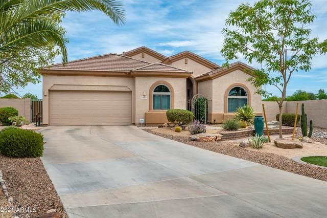 2003 N 135TH Drive, Goodyear, AZ 85395 (MLS #6250378) :: The Luna Team