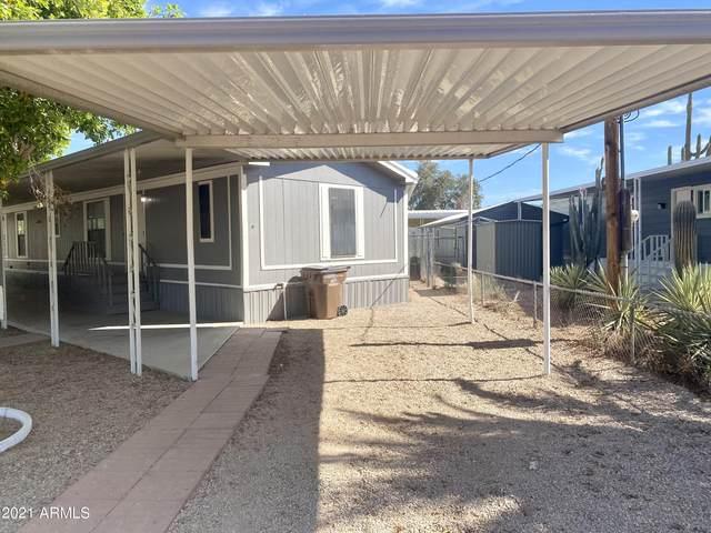 9552 E Arbor Circle, Mesa, AZ 85208 (MLS #6250386) :: Long Realty West Valley