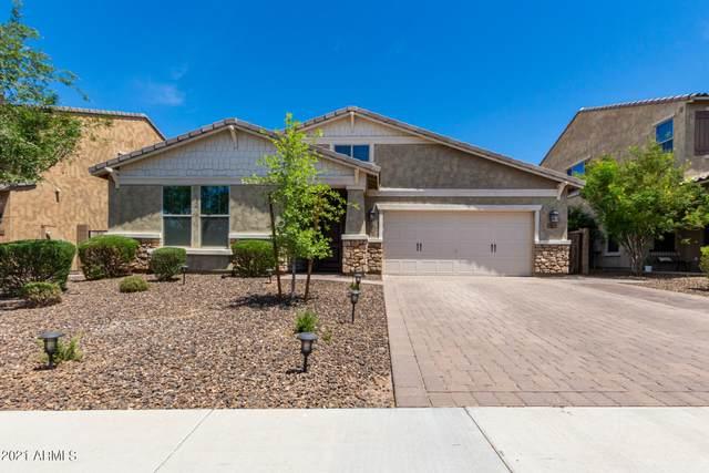 3842 E Alfalfa Drive, Gilbert, AZ 85298 (MLS #6250403) :: Conway Real Estate