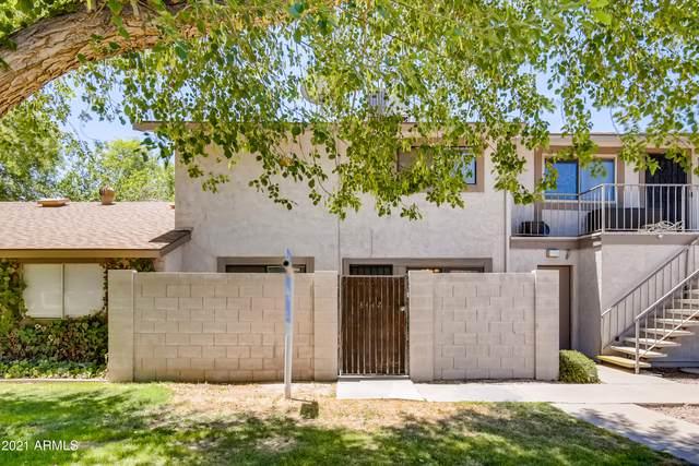 8442 E Roosevelt Street, Scottsdale, AZ 85257 (MLS #6250404) :: The Riddle Group