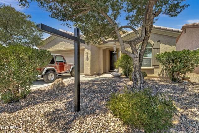 5388 S Marigold Way, Gilbert, AZ 85298 (MLS #6250417) :: Conway Real Estate