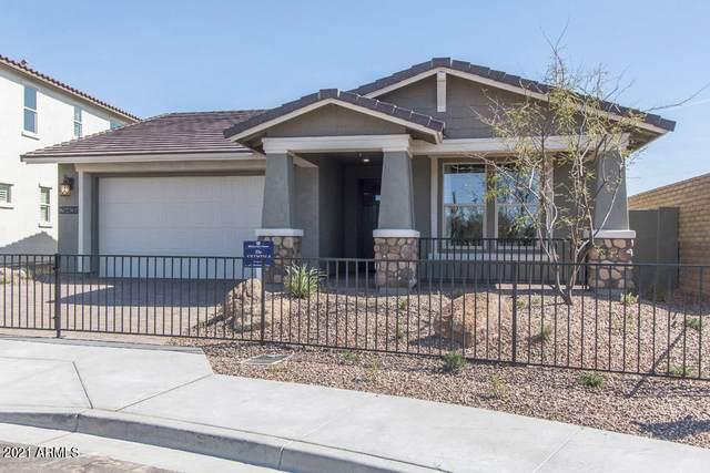 4356 N Pioneer Drive, Litchfield Park, AZ 85340 (MLS #6250423) :: Keller Williams Realty Phoenix