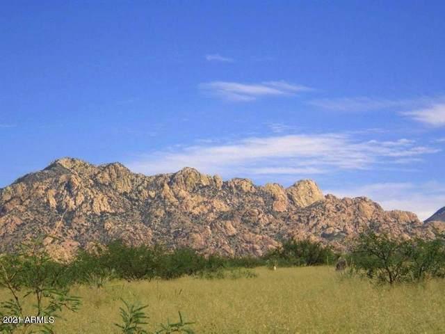 TBD E De Vaca Circle, Saint David, AZ 85630 (MLS #6250430) :: The Garcia Group