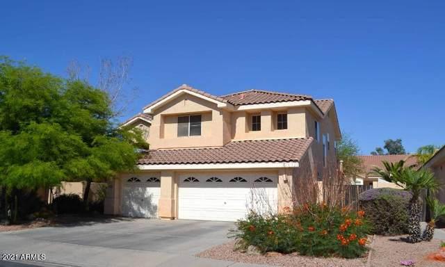 781 N Velero Street, Chandler, AZ 85225 (MLS #6250443) :: Executive Realty Advisors