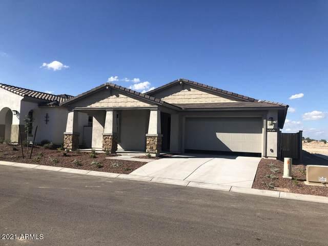 4368 N Pioneer Drive, Litchfield Park, AZ 85340 (MLS #6250506) :: Keller Williams Realty Phoenix