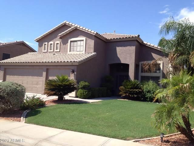 294 W Goldfinch Way, Chandler, AZ 85286 (MLS #6250556) :: Yost Realty Group at RE/MAX Casa Grande