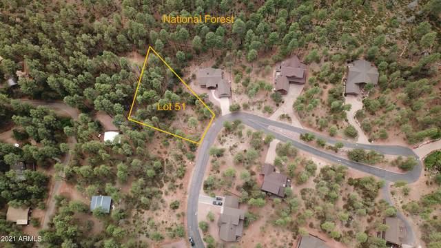51 Forest Trail Court, Pine, AZ 85544 (MLS #6250568) :: The Newman Team