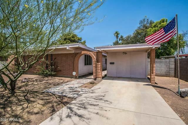 3728 E Sunnyside Drive, Phoenix, AZ 85028 (MLS #6250578) :: The AZ Performance PLUS+ Team
