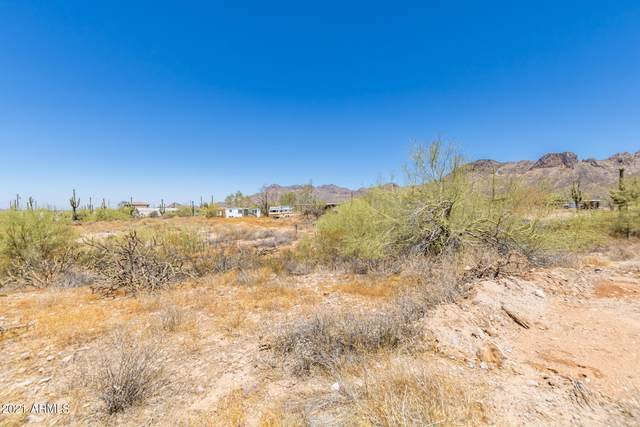 860 W Kaniksu Street, Apache Junction, AZ 85120 (MLS #6250594) :: Scott Gaertner Group