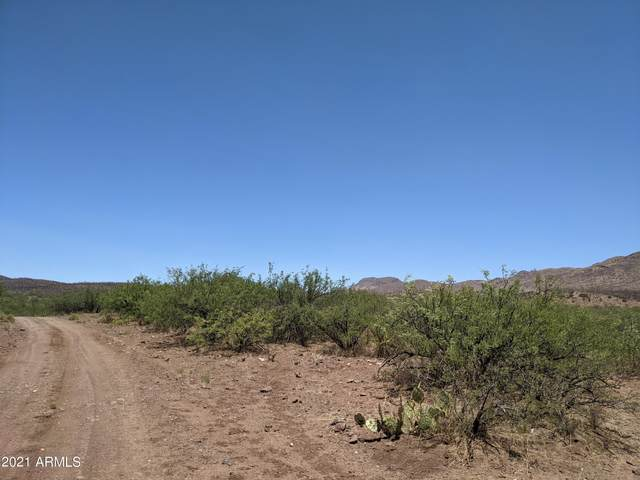 0 E Hummingbird Road, Douglas, AZ 85607 (MLS #6250600) :: The AZ Performance PLUS+ Team