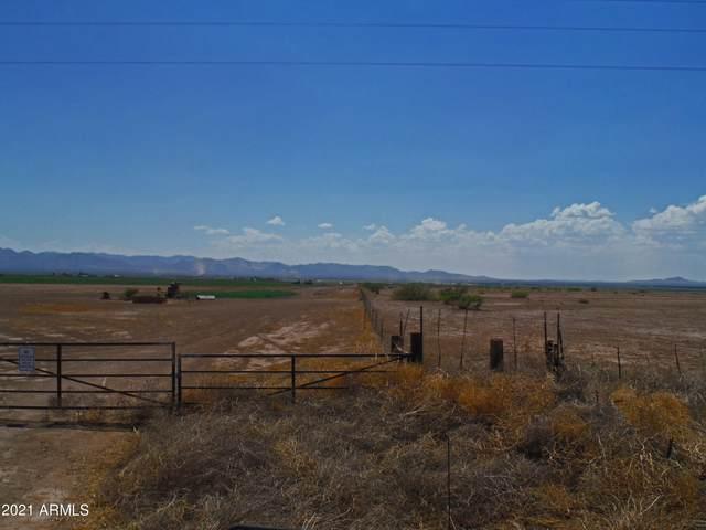 TBD W Roadrunner Lane, McNeal, AZ 85617 (MLS #6250611) :: Justin Brown | Venture Real Estate and Investment LLC