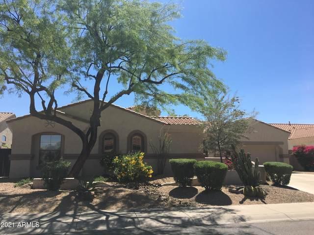 22479 N 77TH Place, Scottsdale, AZ 85255 (MLS #6250644) :: The AZ Performance PLUS+ Team