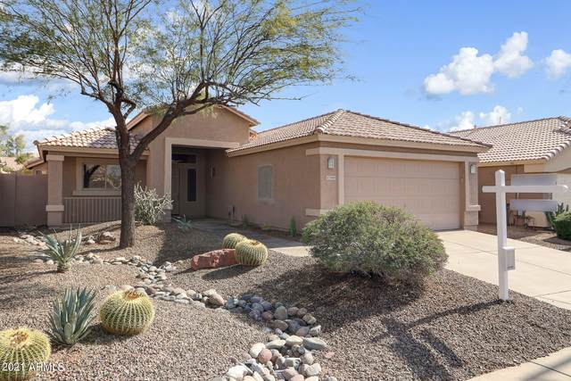 29605 N 51ST Street, Cave Creek, AZ 85331 (MLS #6250647) :: Long Realty West Valley