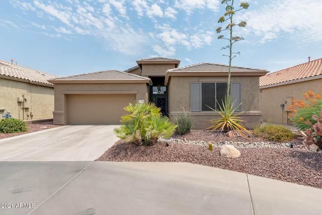 17688 W Hayden Drive, Surprise, AZ 85374 (MLS #6250656) :: The Laughton Team