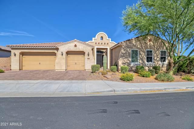 1843 N 99TH Way, Mesa, AZ 85207 (MLS #6250695) :: The Helping Hands Team