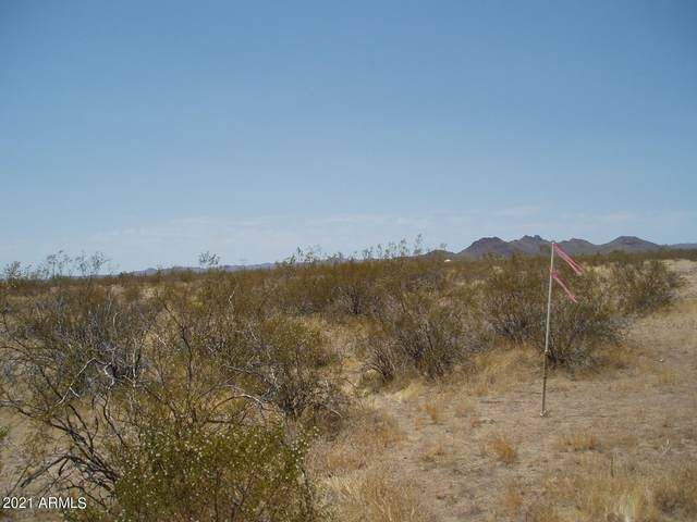 30515 W Forrest Pleasant Place, Unincorporated County, AZ 85361 (MLS #6250702) :: CANAM Realty Group