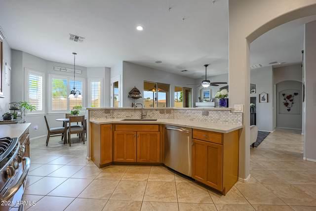 14816 W Edgemont Avenue, Goodyear, AZ 85395 (MLS #6250709) :: The Laughton Team