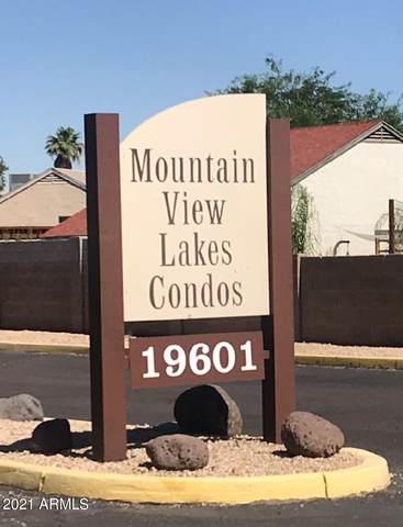 19601 N 7TH Street #1088, Phoenix, AZ 85024 (MLS #6250711) :: Yost Realty Group at RE/MAX Casa Grande