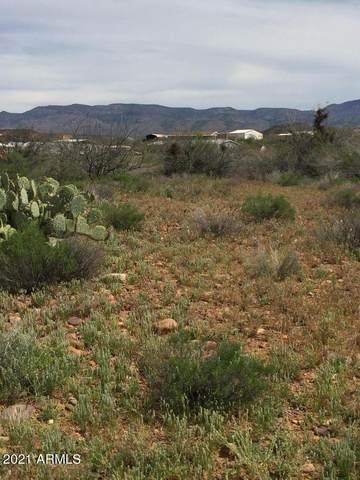 57R N Riverview Lane, Tonto Basin, AZ 85553 (MLS #6250713) :: The AZ Performance PLUS+ Team