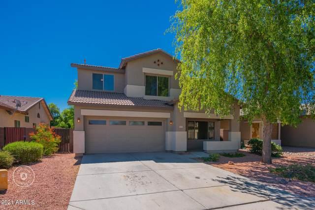 14515 N 145TH Drive, Surprise, AZ 85379 (MLS #6250718) :: Keller Williams Realty Phoenix