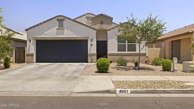 4607 S 25TH Drive, Phoenix, AZ 85041 (MLS #6250735) :: Long Realty West Valley