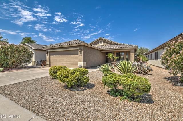 30318 N Sunray Drive, San Tan Valley, AZ 85143 (MLS #6250770) :: CANAM Realty Group