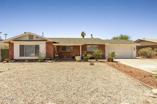 8337 E Turney Avenue, Scottsdale, AZ 85251 (MLS #6250786) :: My Home Group