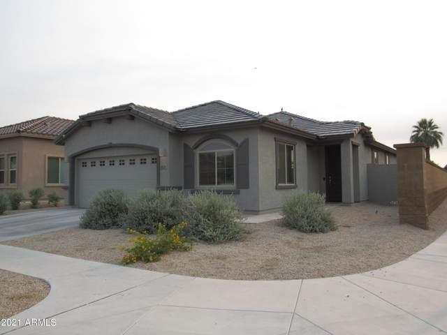 6624 S 4TH Street, Phoenix, AZ 85042 (MLS #6250809) :: Yost Realty Group at RE/MAX Casa Grande