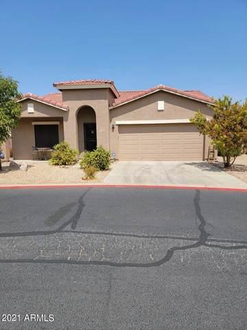 2504 S Powell Road, Apache Junction, AZ 85119 (MLS #6250825) :: Selling AZ Homes Team