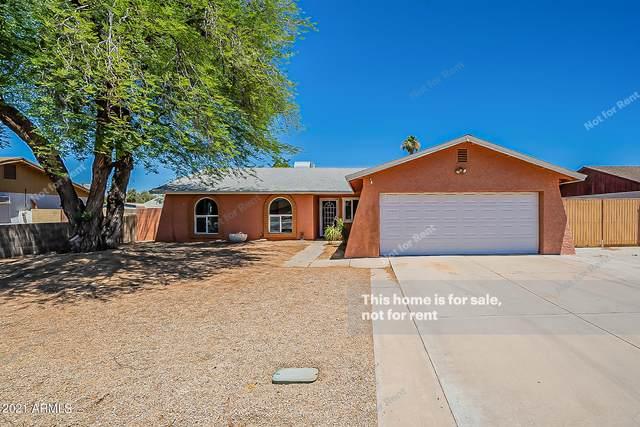 3614 W Bluefield Avenue, Glendale, AZ 85308 (MLS #6250839) :: Yost Realty Group at RE/MAX Casa Grande