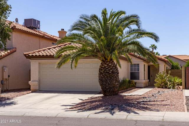 17630 N 47TH Street, Phoenix, AZ 85032 (MLS #6250870) :: The Riddle Group