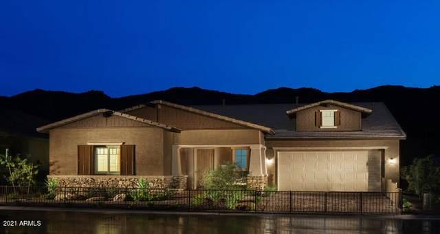 1423 E Milada Drive, Phoenix, AZ 85042 (MLS #6250883) :: Dave Fernandez Team | HomeSmart