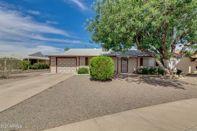10710 W Canterbury Drive, Sun City, AZ 85351 (MLS #6250884) :: The Daniel Montez Real Estate Group