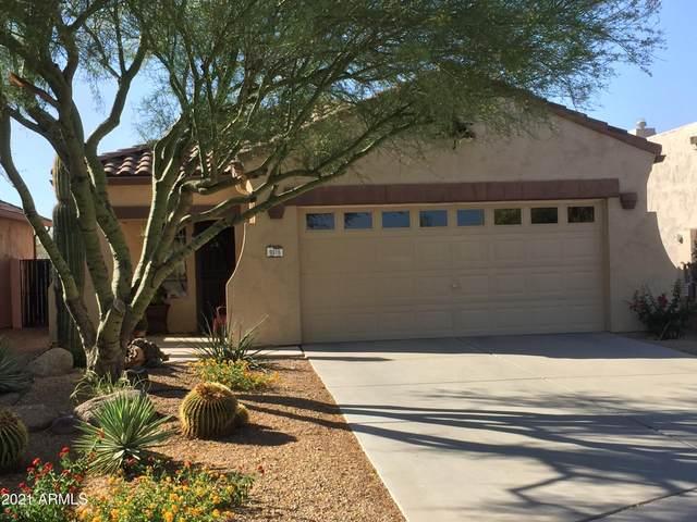 9916 E Desert Trail Lane, Gold Canyon, AZ 85118 (MLS #6250889) :: Selling AZ Homes Team