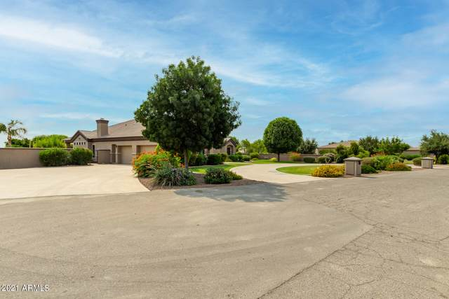 24724 S 213TH Place, Queen Creek, AZ 85142 (MLS #6250961) :: Walters Realty Group